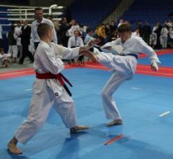 karate-do.JPG