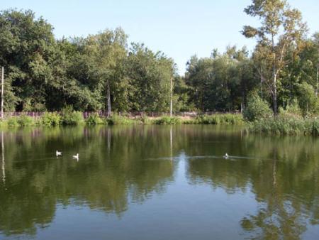 рыбалка в сормовском парке нижний новгород
