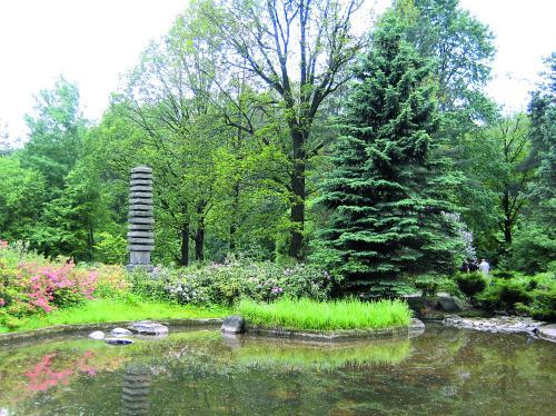 Ремонт компьютеров Ботанический сад, Ремонт компьютеров на Ботаническом саду , Компьютерная помощь Ботанический сад.